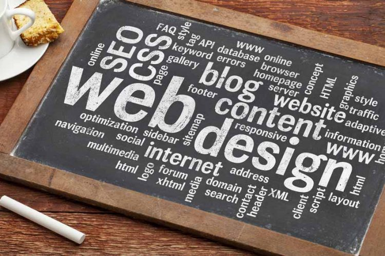 Web Design Beginners